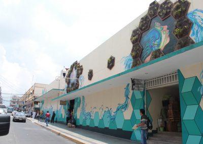 013 Padre Mercado, Madre de siglos, intervención artística en el Mercado Jáureguim Xalapa, Veracruz