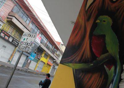 015 Padre Mercado, Madre de siglos, intervención artística en el Mercado Jáureguim Xalapa, Veracruz
