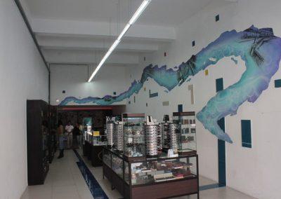 017 Manantial de historias, acrílico y carbon sobre muro, Plaza Real, Xalapa, Veracruz