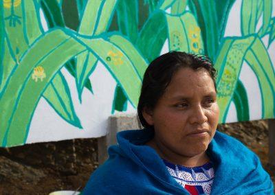 038 Mural colectivo La mano vuelta a la salud, Filomeno Mata, Veracruz